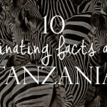 10 Fascinating Facts about Tanzania
