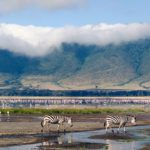 4 Reasons to Travel to Tanzania in 2018
