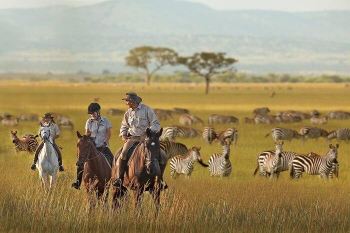 Serengeti Horseback Safari
