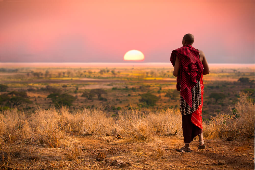 A Maasai man in the wilderness