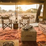 The best and most luxurious way to see The Great Wildebeest Migration