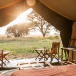 A list of the best honeymoon activities and accommodation in Tanzania