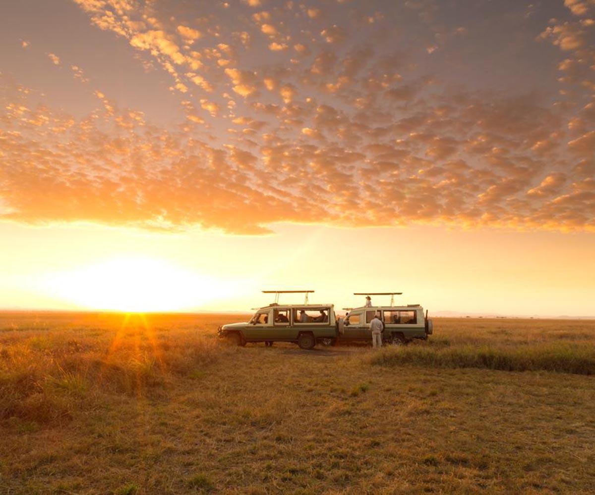 Sunset in Serengeti - close side vehicle